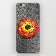 Goldsworthy in the Fall iPhone & iPod Skin
