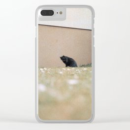neat & tidy Clear iPhone Case