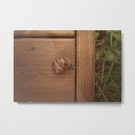 Snail Garden Metal Print