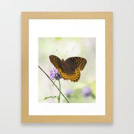 Golden Beauty Framed Art Print