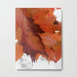 Leaf Me Alone Metal Print