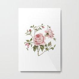 Pink Roses – Original Watercolor Metal Print