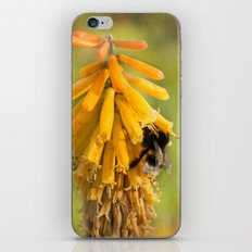 Happy Bee iPhone & iPod Skin