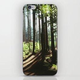 Cascade Mountains, Washington iPhone Skin