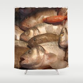 Variety of Fresh Fish Seafood on Ice 2 Shower Curtain