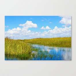 Florida Welands Canvas Print