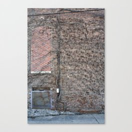 resistance is a bad idea Canvas Print