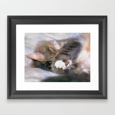 My Cat Actually Sleeps This Way Framed Art Print