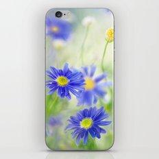 Daisy dear iPhone & iPod Skin