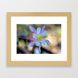 Natures Handiwork Framed Art Print
