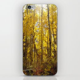 Golden Evening iPhone Skin