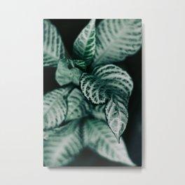 Different Metal Print