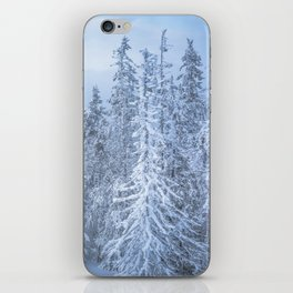 Winter forest in the Mountains iPhone Skin