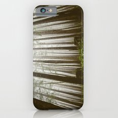 Rainforest of the Pacific Northwest iPhone 6s Slim Case