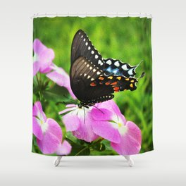 Swallow Tail Butterfly Shower Curtain