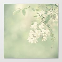 botanical Canvas Prints featuring Botanical by Christina Lynn Williams