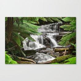 Triplet Falls Australia Canvas Print
