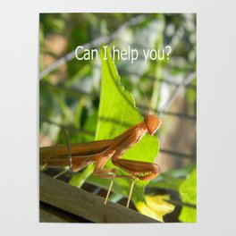 Can I help  you? Poster
