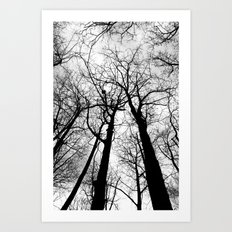 As Darkness Falls Art Print