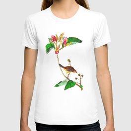 Bachman's Finch James Audubon Vintage Scientific Illustration American Birds T-shirt