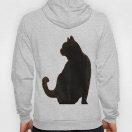 Halloween Black Cat Silhouette  Hoody