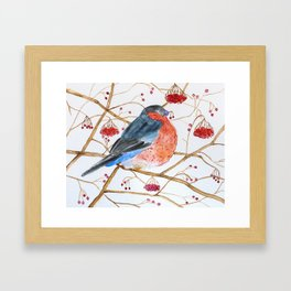 Cute Watercolor Bird Framed Art Print