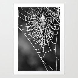 FROZEN WEB Art Print