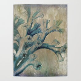 Blue Coral Poster