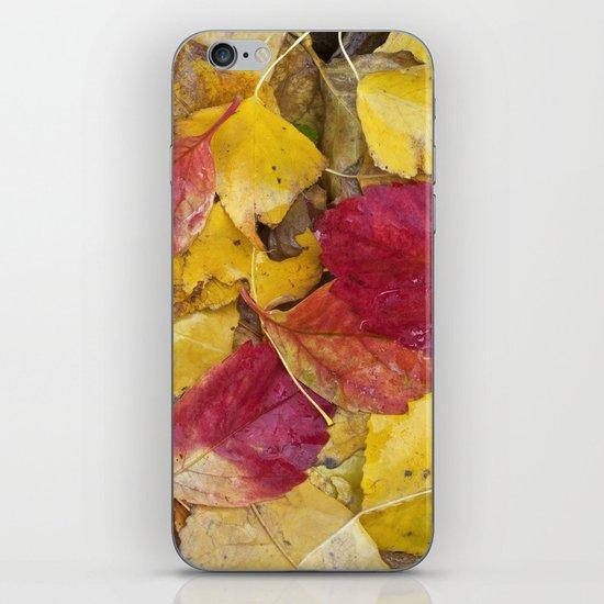 """""""Rain leaves"""" iPhone & iPod Skin"""