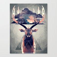 Thunder Boy Canvas Print