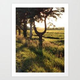 The  U tree Art Print