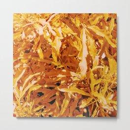 Yellow Garden Flowers Metal Print