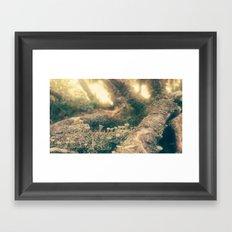 minishrooms Framed Art Print