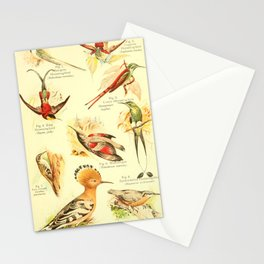 William Playne Pycraft - A Book of Birds (1908) - Plate 22: Hummingbirds Stationery Cards