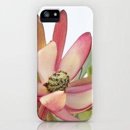 Fynbos Botanical Collection 5 iPhone Case