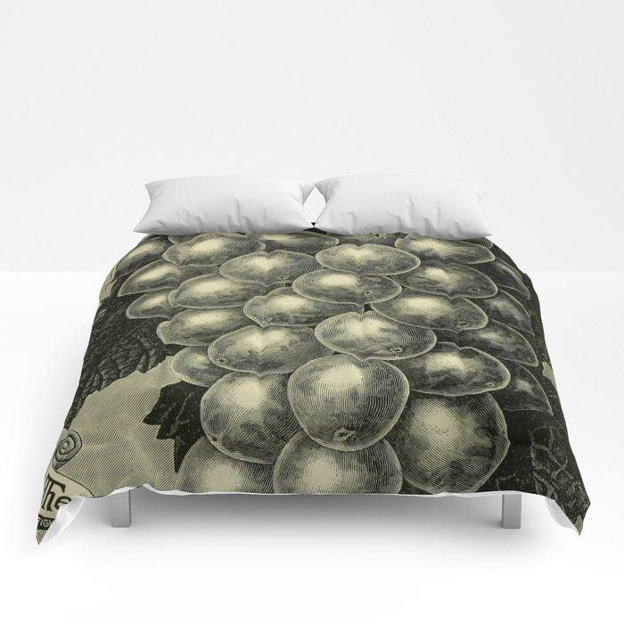 OUR NATIVE GRAPE. THE GENEVA 1893 Comforters