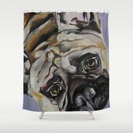 Dog, bulldog, animal, funny Shower Curtain