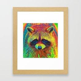 AnimalColor_Racoon_002 Framed Art Print