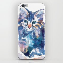 Crazy Quilt Kittens iPhone Skin