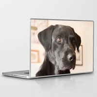 labrador Laptop & iPad Skins featuring Black Labrador   by Simon's Photography