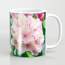PINK BLOSSOM of RHODODENDRON Coffee Mug