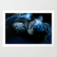 DACKEL DOG #36 Art Print