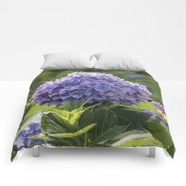 Hydrangea in Bloom Comforters
