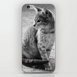 Lloyd- Black and White Cat Photography iPhone Skin