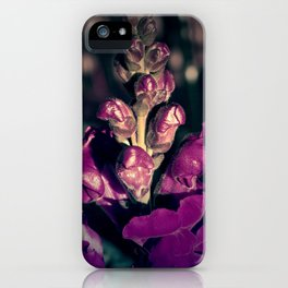 Lupinus-Purple iPhone Case