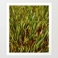 Green leaves Art Print