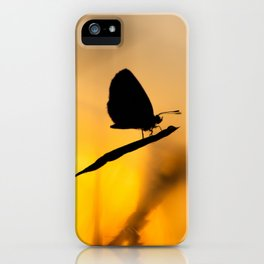 Silhouette of moths iPhone Case