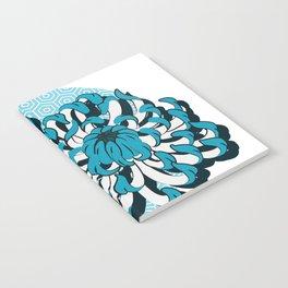 flow_c Notebook