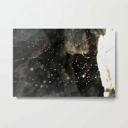 Stills-Web Metal Print