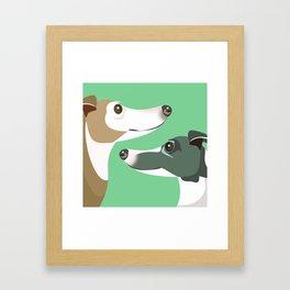 Greyhounds Framed Art Print